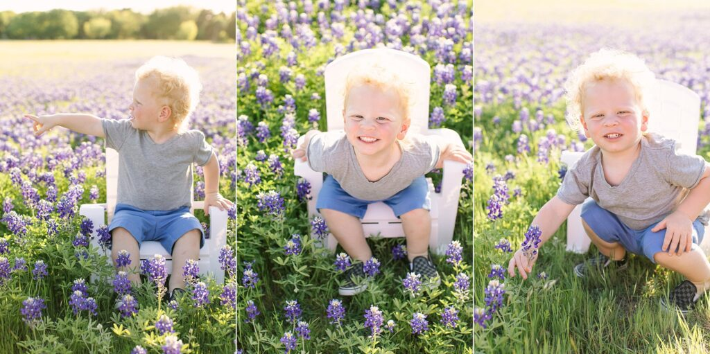 Babies and Bluebonnets